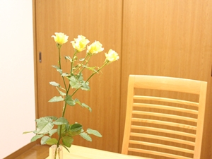 f:id:raku-kurashi:20200323055321j:plain