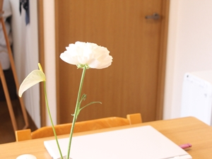 f:id:raku-kurashi:20200408191547j:plain