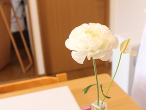 f:id:raku-kurashi:20200409140935j:plain