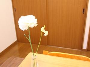 f:id:raku-kurashi:20200413141318j:plain