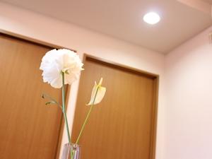 f:id:raku-kurashi:20200415100906j:plain
