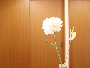 f:id:raku-kurashi:20200415102324j:plain