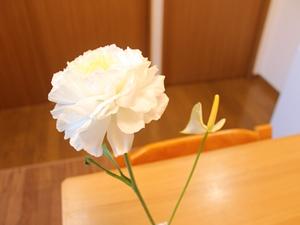 f:id:raku-kurashi:20200417075012j:plain