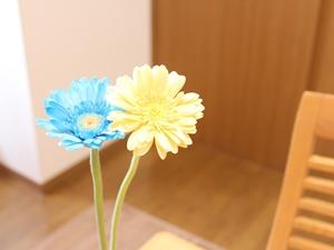 f:id:raku-kurashi:20200506184620j:plain