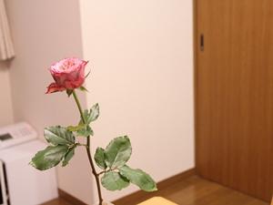 f:id:raku-kurashi:20200629153125j:plain