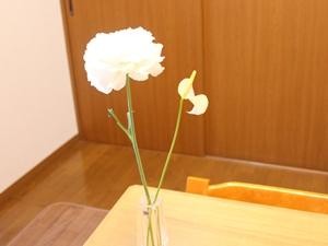 f:id:raku-kurashi:20201215131054j:plain