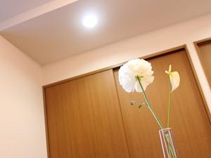 f:id:raku-kurashi:20201215131340j:plain