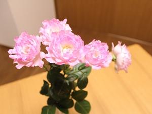 f:id:raku-kurashi:20210103155303j:plain