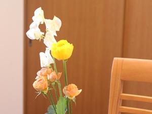 f:id:raku-kurashi:20210116115237j:plain