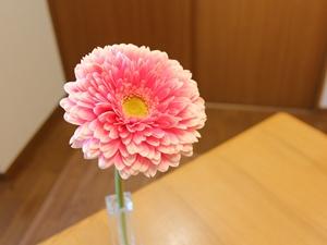 f:id:raku-kurashi:20210310175943j:plain