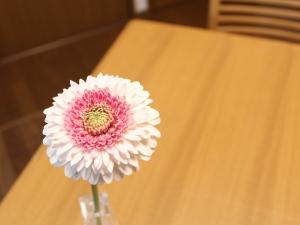 f:id:raku-kurashi:20210408072038j:plain