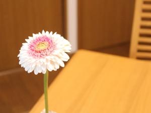 f:id:raku-kurashi:20210420113303j:plain