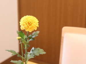 f:id:raku-kurashi:20211013161909j:plain