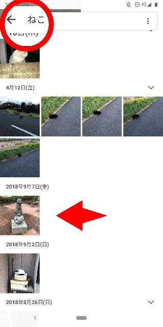 f:id:rakuda95:20190530072716j:image