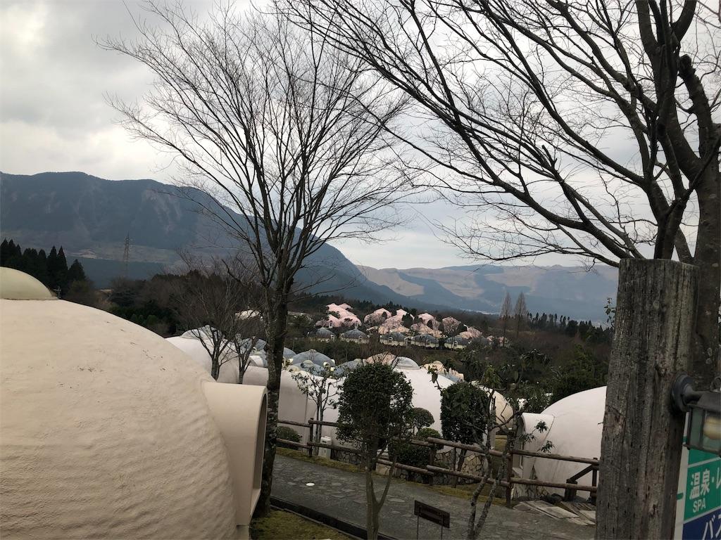 f:id:rakujirou:20200118232742j:image