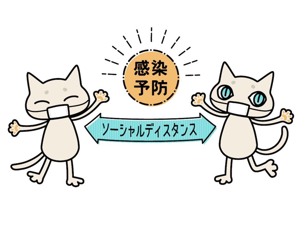 f:id:rakujirou:20210310231214j:plain:w300