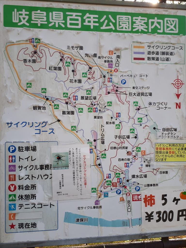 f:id:rakuraku0308:20181201211426j:plain