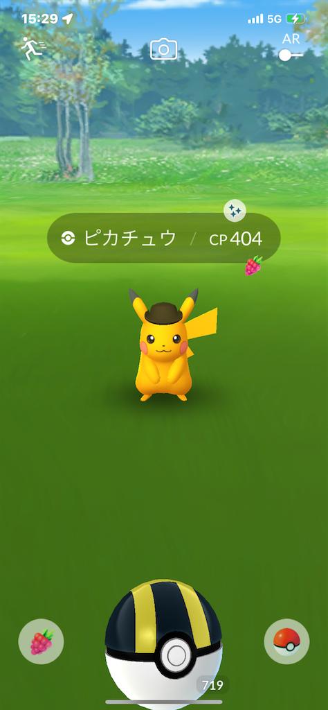 f:id:rakusyouke:20211017204425p:image