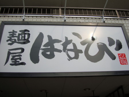 20100131105044