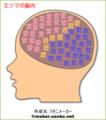 エンマの脳内