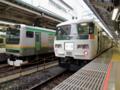185系&東海道線E231系(東京駅)