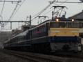 EF65-501+12系5B+EF64-1001「ELみなかみ号」(桶川~北本)