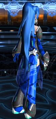PSO2-アバターSS青バリス背面