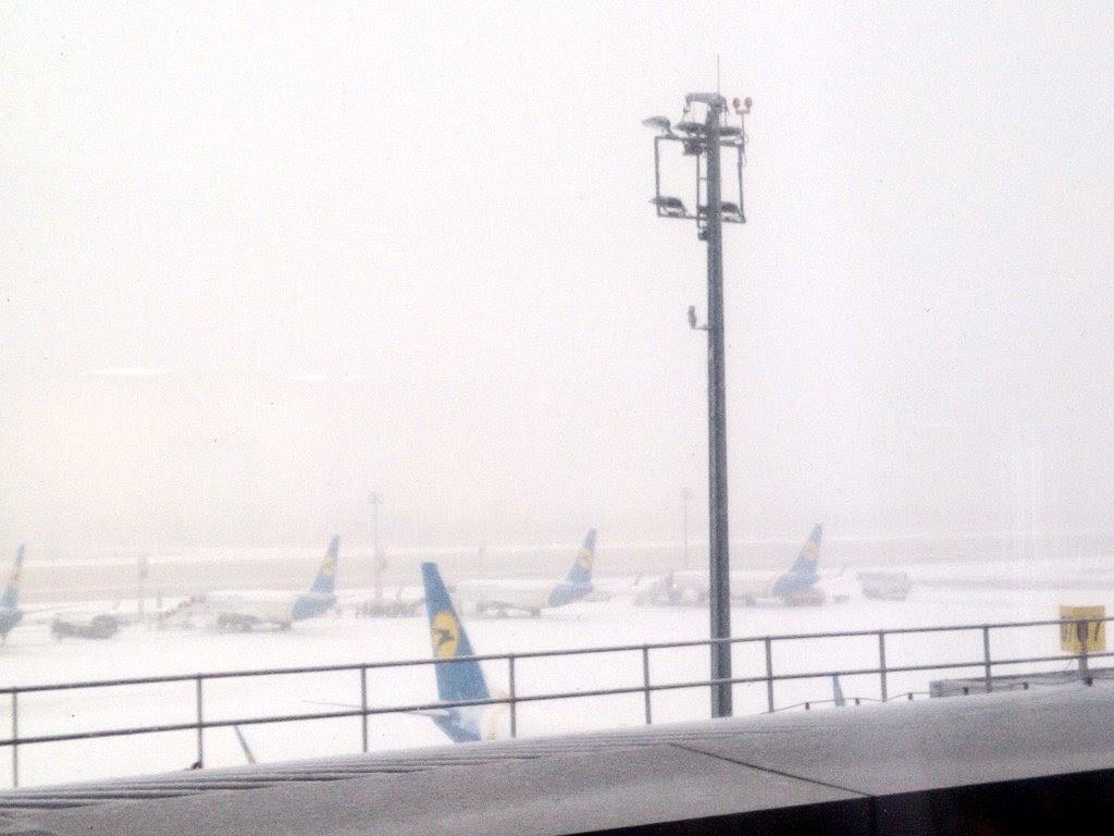 ウクライナ-雪