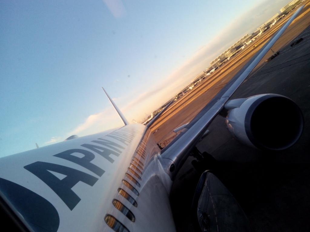 JAL-期待-機体