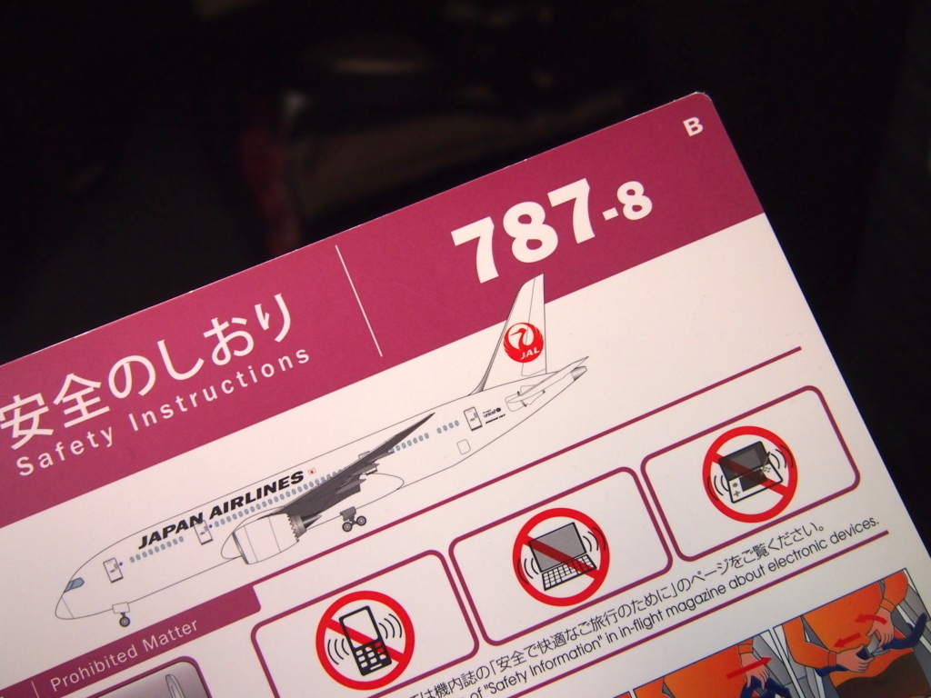 JAL_787-8