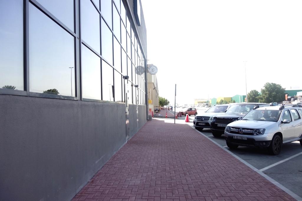 Mirzam-店頭
