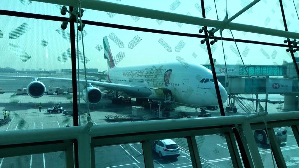 エミレーツ航空-Year of Zayed