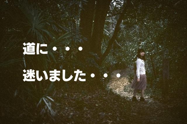 f:id:ranmaru-24mensou:20160827100415j:plain