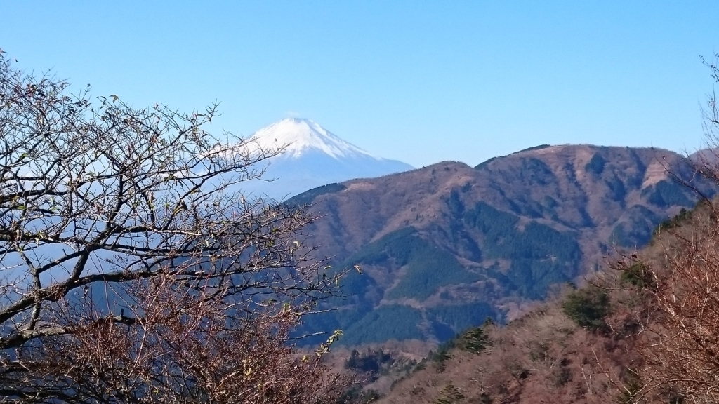 f:id:ranmarukuro:20171204094925j:plain