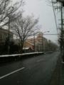 雪の北山通