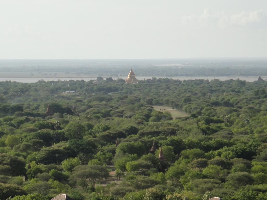 ミャンマー バガンビュータワー 展望台からの風景 川