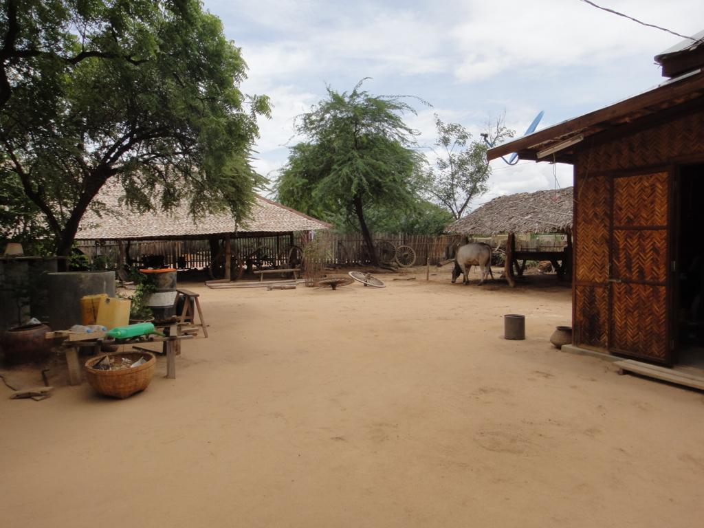 ミャンマー バガン 地元の村
