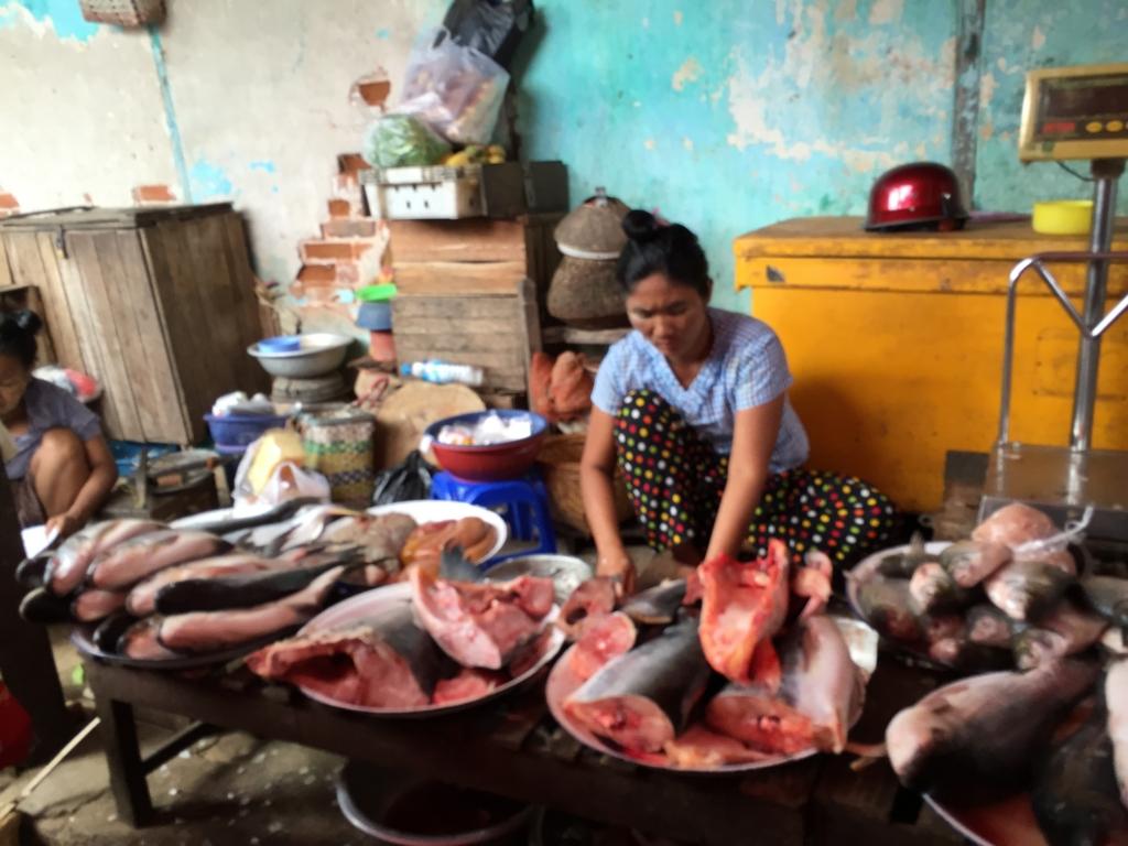 ミャンマー バガン ニャンウー・マーケット 魚屋