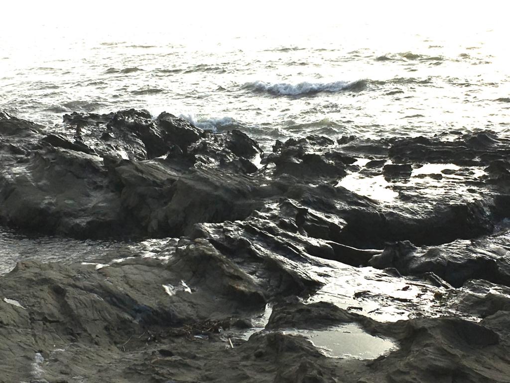 千葉県内房 保田 海岸 岩場
