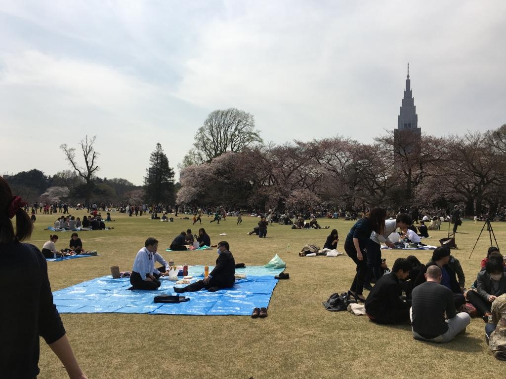 新宿御苑 芝生が広々