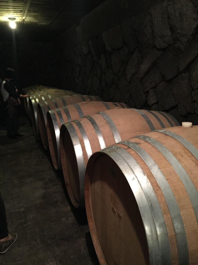 「ルミエールワイナリー」ワイン貯蔵庫