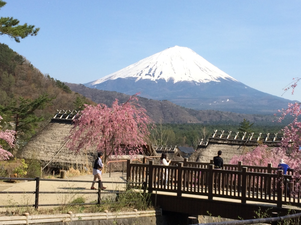 「西湖いやしの里根場」より富士山