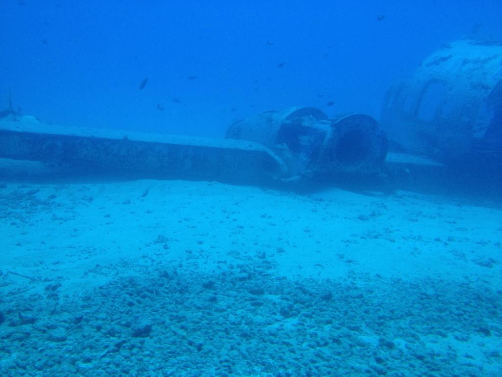 ハワイ オアフ島 観光用潜水艦 「アトランティス」よりの海中 飛行機