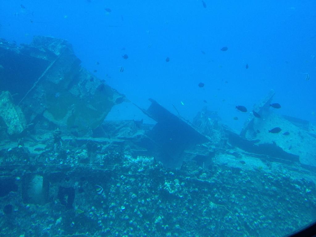 ハワイ オアフ島 観光用潜水艦 「アトランティス」よりの海中 沈船