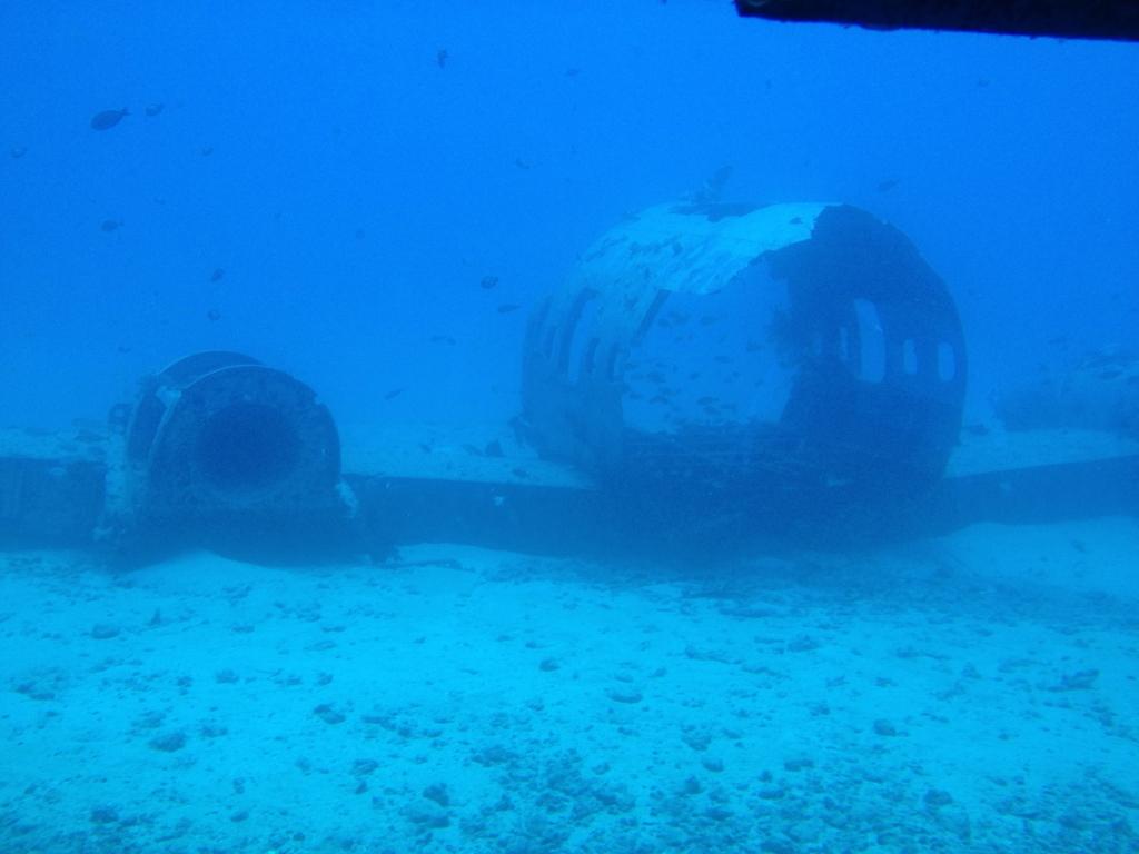 ハワイ オアフ島 観光用潜水艦 「アトランティス」よりの海中 飛行機、魚の住処