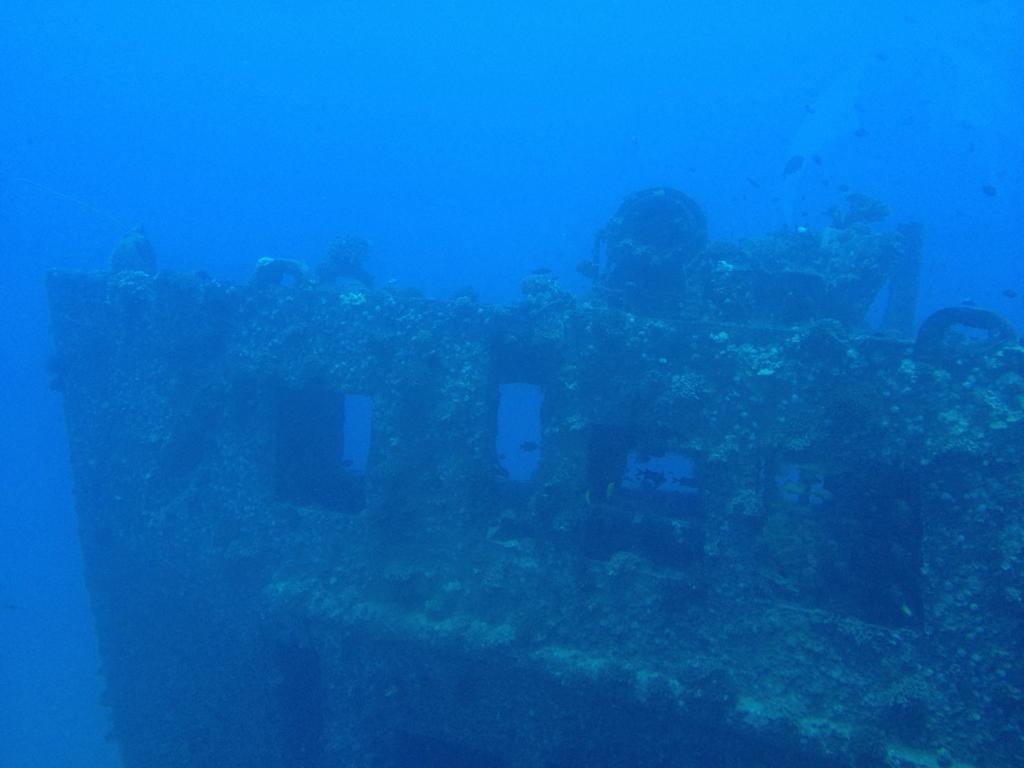 ハワイ オアフ島 観光用潜水艦 「アトランティス」よりの海中 タートル