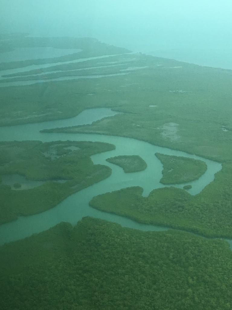 ベリーズ:ブルーホール 遊覧飛行 大きなマングローブの森