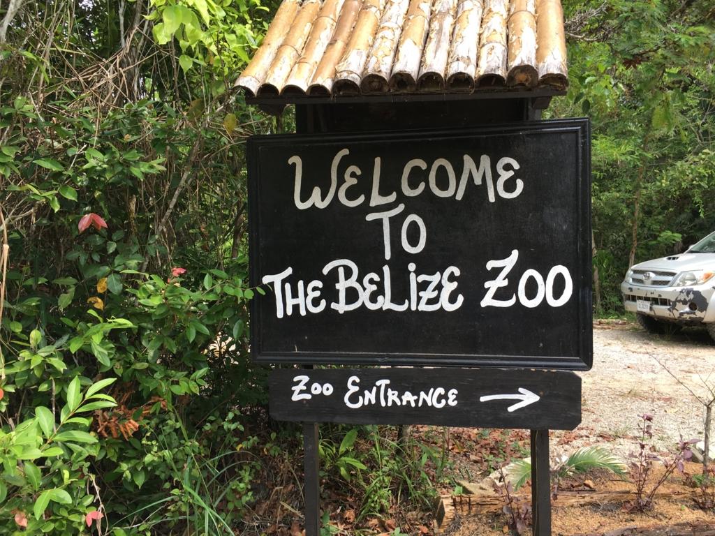 ベリーズ動物園 入り口看板