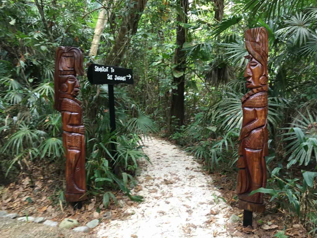 ジャングルの中のベリーズ動物園 歩道