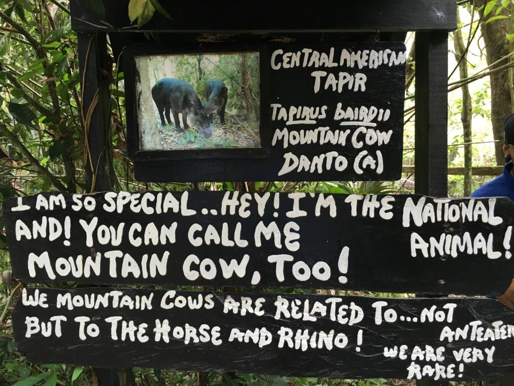ベリーズ動物園 バグ説明看板